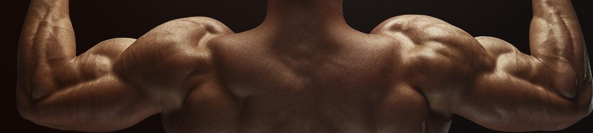 Mięśnie grzbietu: Jak trenować plecy bez sprzętu, maszyn i sztangi?