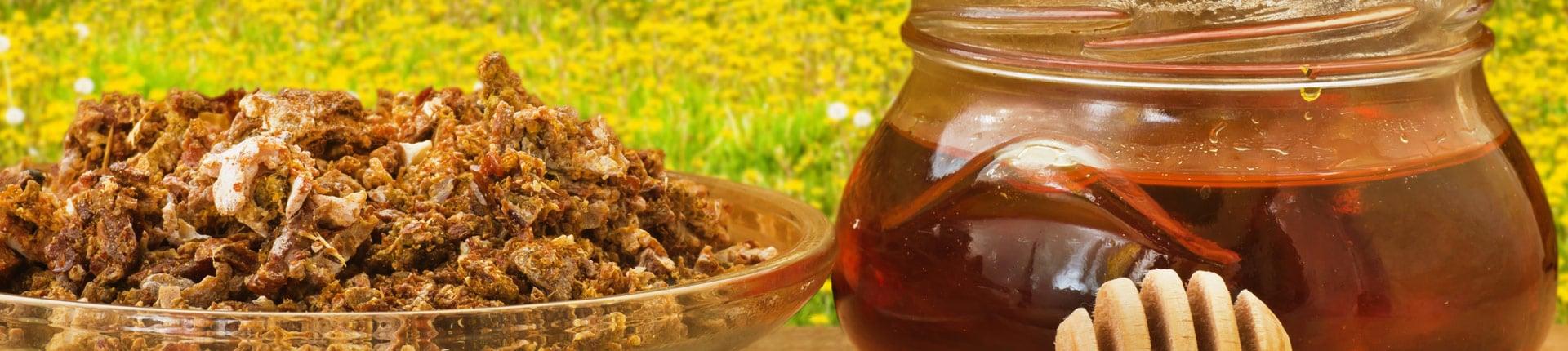 Propolis ( kit pszczeli ) a wrażliwość insulinowa