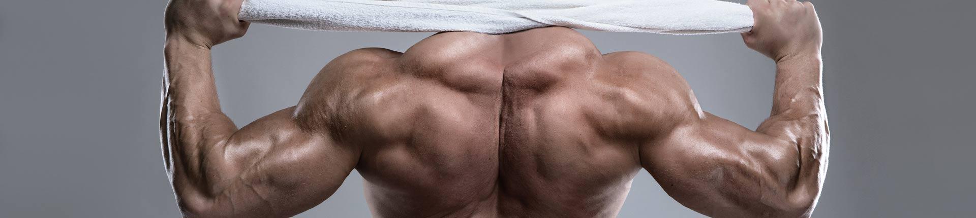 Jak poprawić funkcjonalność mieśni grzbietu oraz grubość pleców?