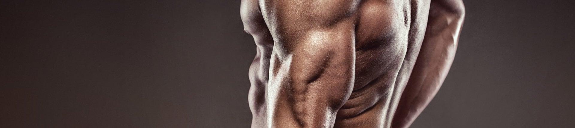 Ćwiczenia na triceps bez sprzętu - Trening tricepsów w domu
