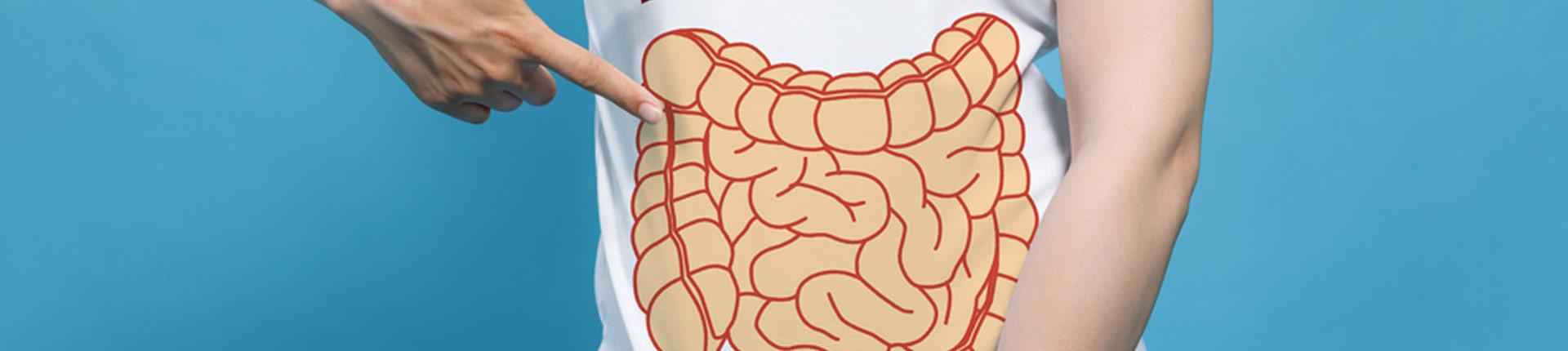 Czym różnią się prebiotyki od probiotyków?