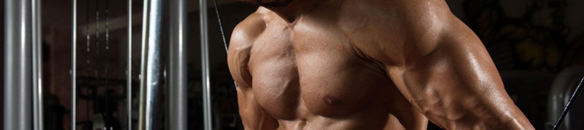 Jak szybko węglowodany docierają do mięśni?