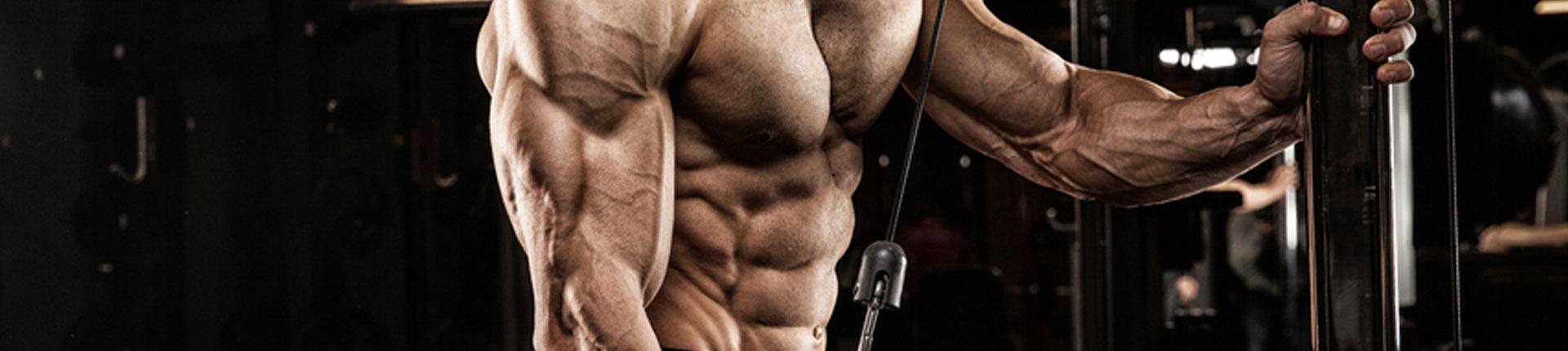 BCAA a synteza białek mięśniowych. Czy warto sięgać po BCAA?