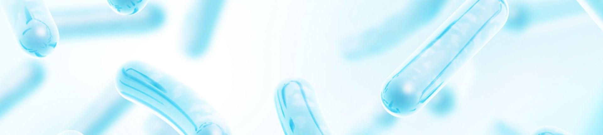 Czym jest Lactobacillus Acidophilus? Właściwości i działanie probiotyku