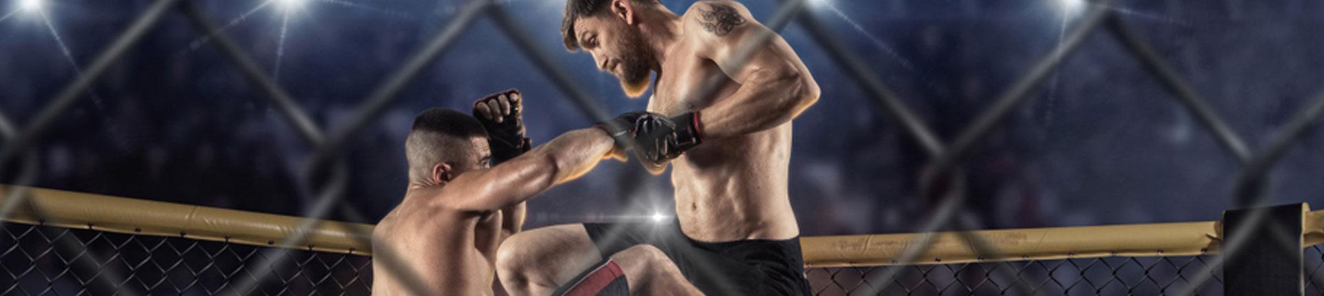 Wydatek energetyczny i suplementy w sportach walki