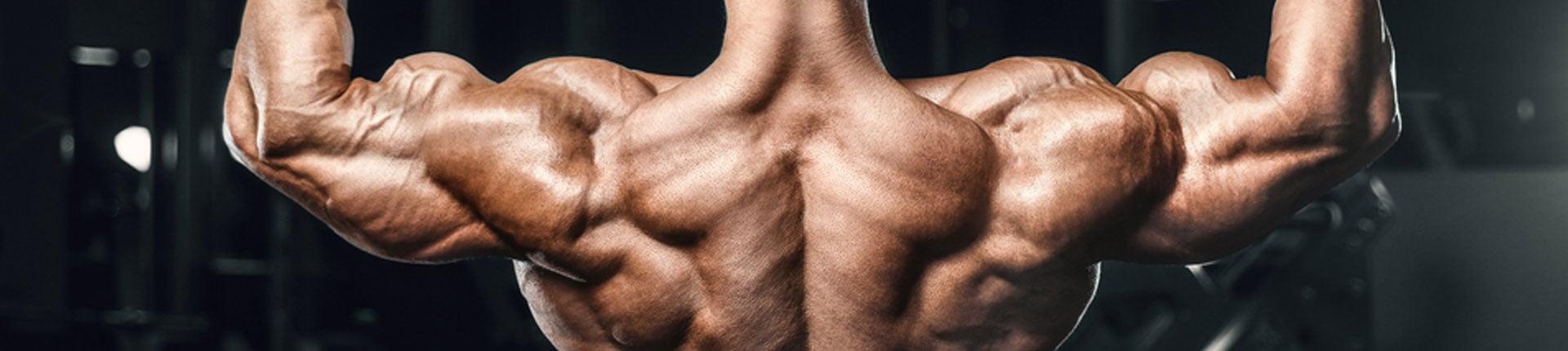 Jak rozbudować tylną część mięśni naramiennych? Ćwiczenia na tył barków