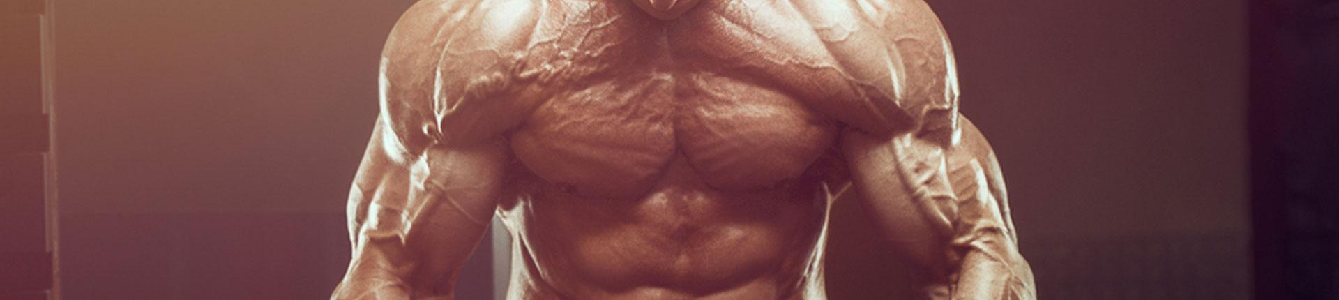 Sterydowe mity według zawodnika IFBB PRO