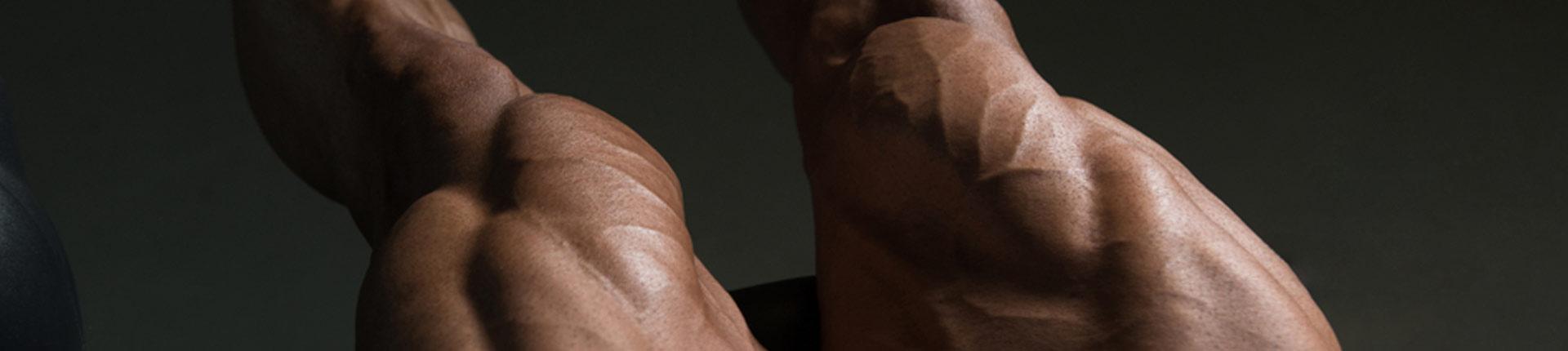 Jak trenować nogi? 6 najlepszych planów treningowych dla mężczyzn!