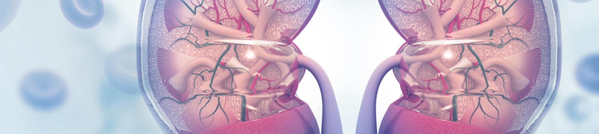 Jak dieta ketogeniczna wpływa na nerki?