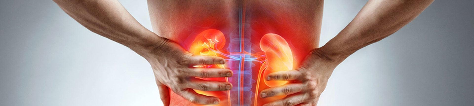 Chore nerki, co jeść a czego unikać? Dieta w chorobach nerek