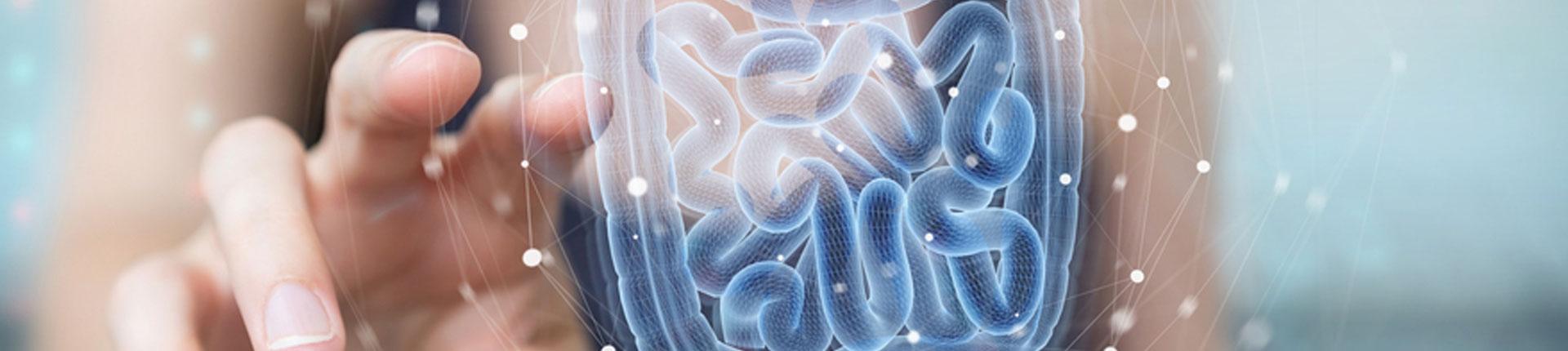 Zdrowe jelita - jak dbać i odbudować florę bakteryjną?