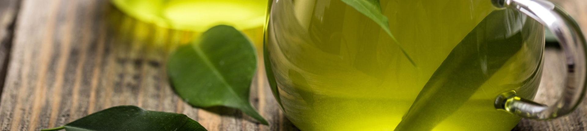 Dlaczego zielona herbata jest aż tak ważna dla zdrowia?