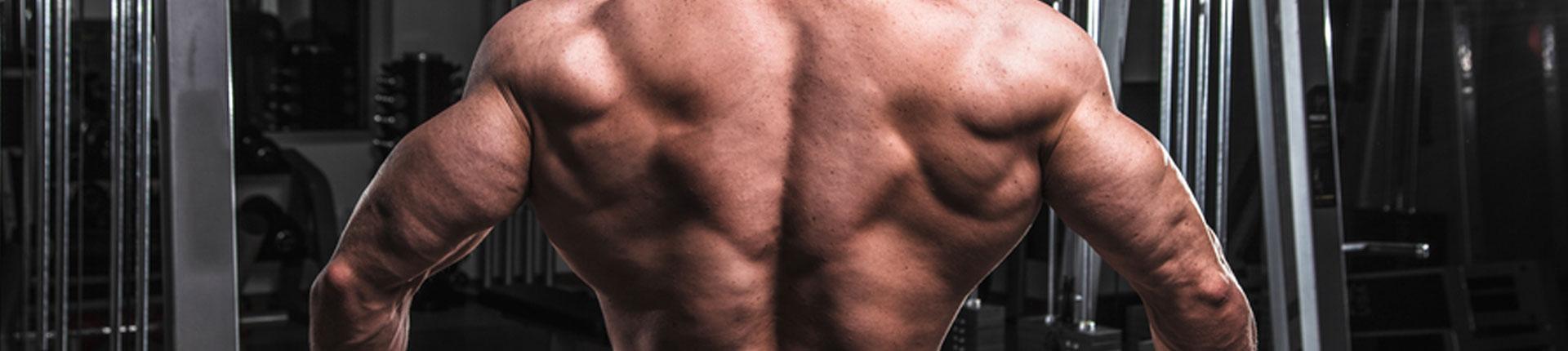 Jak trenować plecy? Trening grzbietu: fakty, mity i błędy