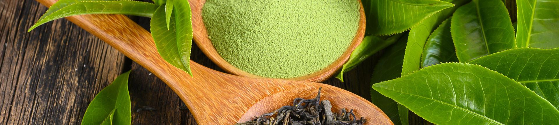 Zielona herbata chroni układ krążenia i wątrobę