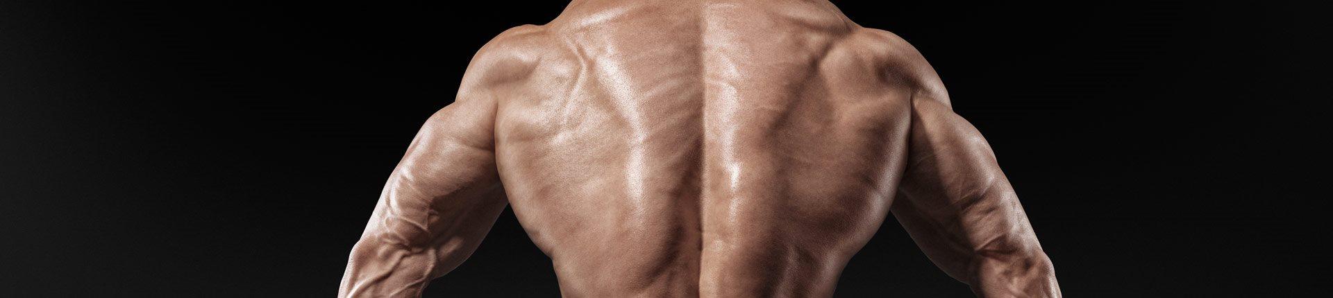Trening grzbietu: najlepsze ćwiczenia pod lupą